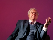 David Attenborough, sitting.